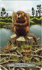 14Cups Animal Totem Tarot - Sách Hướng Dẫn