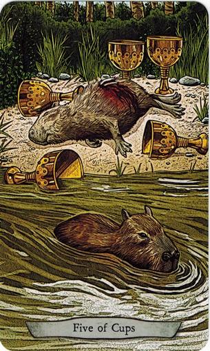 Ý nghĩa lá 5 of Cups trong bộ bài Animal Totem Tarot