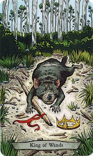 Ý nghĩa lá King of Wands trong bộ bài Animal Totem Tarot