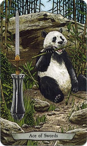 Ý nghĩa lá Ace of Swords trong bộ bài Animal Totem Tarot