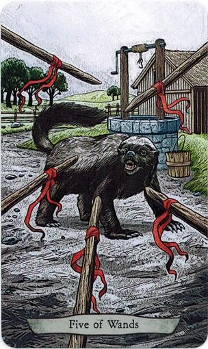 Ý nghĩa lá 5 of Wands trong bộ bài Animal Totem Tarot