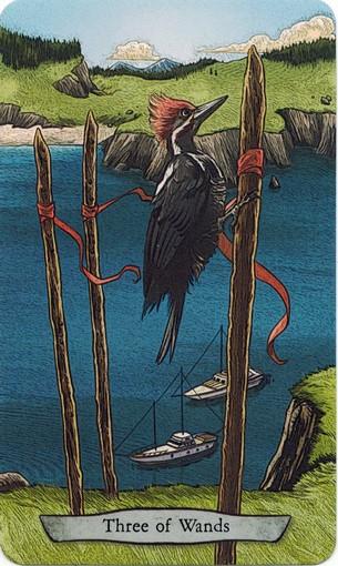 Ý nghĩa lá 3 of Wands trong bộ bài Animal Totem Tarot