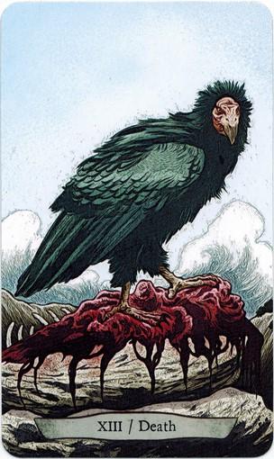 Lá XIII. Death – Animal Totem Tarot