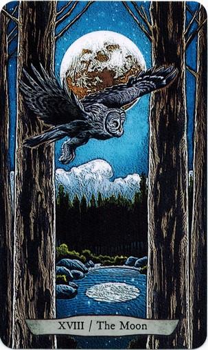 Ý nghĩa lá XVIII. The Moon trong bộ bài Animal Totem Tarot
