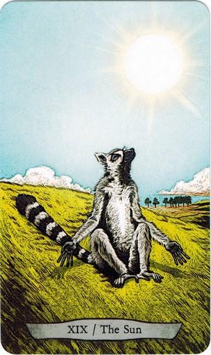 Ý nghĩa lá XIX. The Sun trong bộ bài Animal Totem Tarot