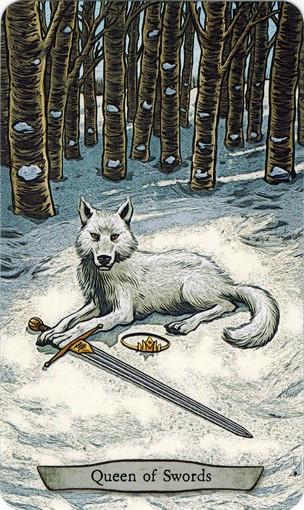 Ý nghĩa lá Queen of Swords trong bộ bài Animal Totem Tarot