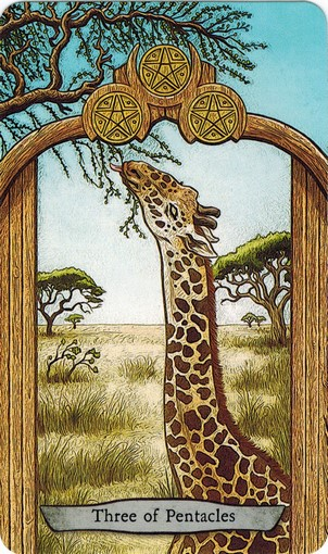 Ý nghĩa lá 3 of Pentacles trong bộ bài Animal Totem Tarot