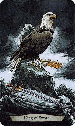 Ý nghĩa lá King of Swords trong bộ bài Animal Totem Tarot