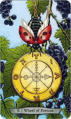 Ý nghĩa lá X. The Wheel of Fortune trong bộ bài Animal Totem Tarot