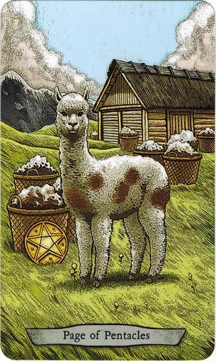 Ý nghĩa lá Page of Pentacles trong bộ bài Animal Totem Tarot