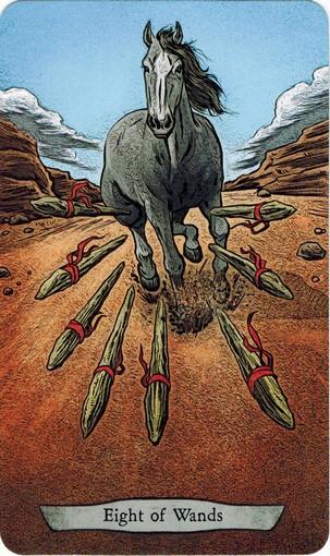 Ý nghĩa lá 8 of Wands trong bộ bài Animal Totem Tarot