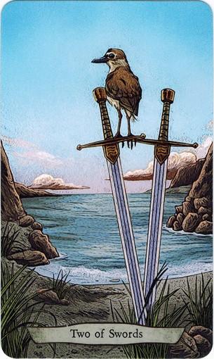 Ý nghĩa lá 2 of Swords trong bộ bài Animal Totem Tarot