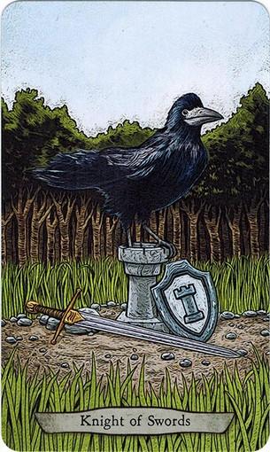 Ý nghĩa lá Knight of Swords trong bộ bài Animal Totem Tarot