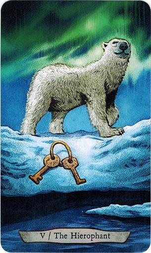 Ý nghĩa lá V. The Hierophant trong bộ bài Animal Totem Tarot