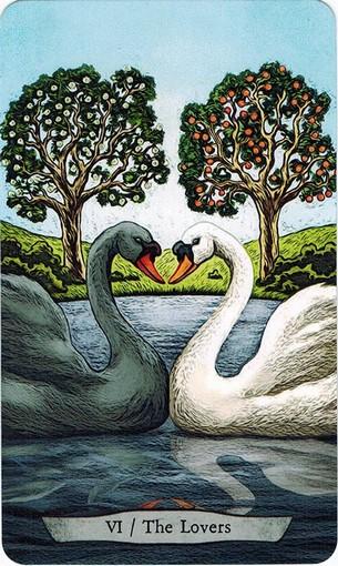 Ý nghĩa lá VI. The Lovers trong bộ bài Animal Totem Tarot