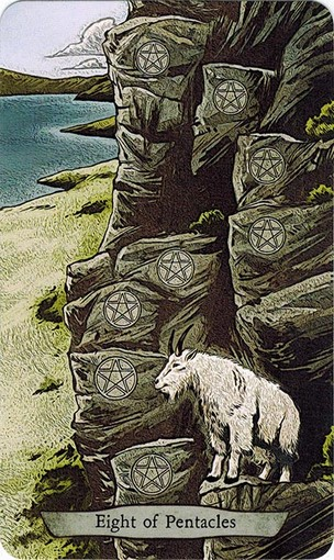 Ý nghĩa lá 8 of Pentacles trong bộ bài Animal Totem Tarot