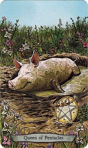 Ý nghĩa lá Queen of Pentacles trong bộ bài Animal Totem Tarot