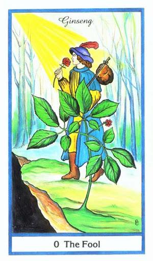 Ý nghĩa lá The Fool trong bộ bài Herbal Tarot