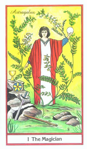 Ý nghĩa lá The Magician trong bộ bài Herbal Tarot