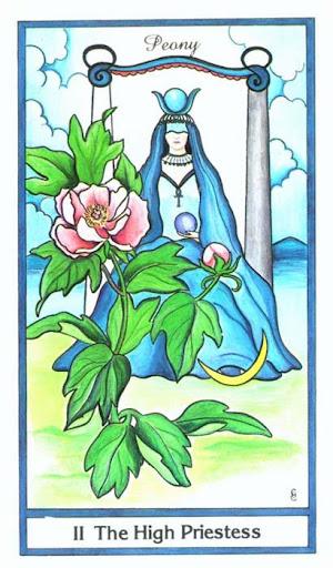Ý nghĩa lá The High Priestess trong bộ bài Herbal Tarot
