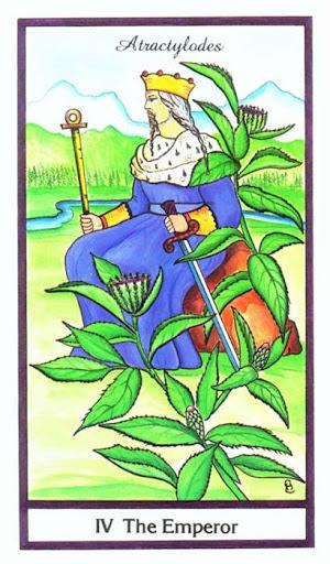 Ý nghĩa lá The Emperor trong bộ bài Herbal Tarot