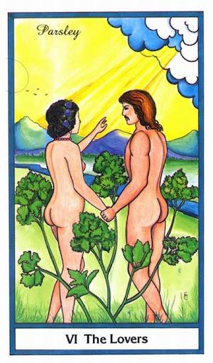 Ý nghĩa lá The Lover trong bộ bài Herbal Tarot
