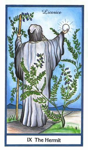 Ý nghĩa lá The Hermit trong bộ bài Herbal Tarot
