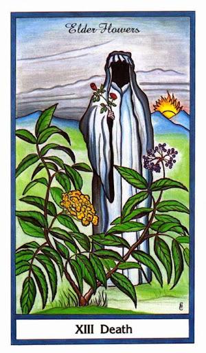 Ý nghĩa lá Death trong bộ bài Herbal Tarot