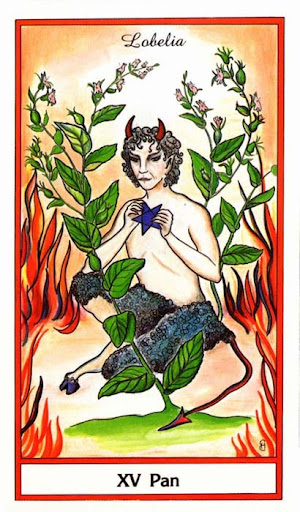 Ý nghĩa lá Pan (The Devil) trong bộ bài Herbal Tarot
