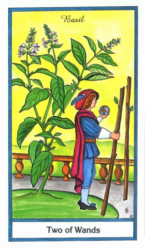 Ý nghĩa lá 2 of Wands trong bộ bài Herbal Tarot