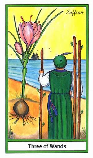 Ý nghĩa lá 3 of Wands trong bộ bài Herbal Tarot