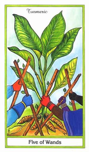 Ý nghĩa lá 5 of Wands trong bộ bài Herbal Tarot