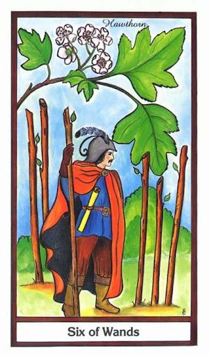 Ý nghĩa lá 6 of Wands trong bộ bài Herbal Tarot