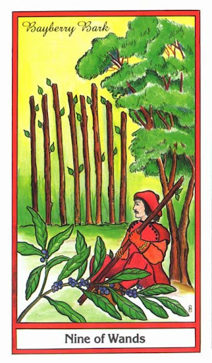 Ý nghĩa lá 9 of Wands trong bộ bài Herbal Tarot