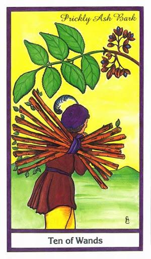 Ý nghĩa lá 10 of Wands trong bộ bài Herbal Tarot