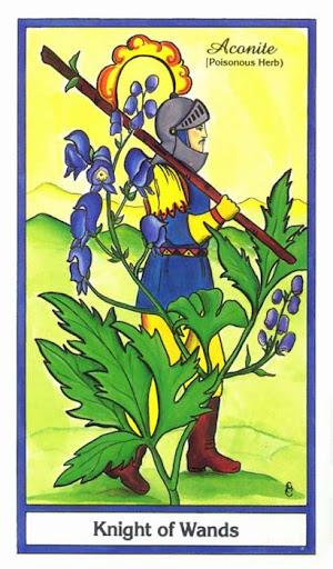 Ý nghĩa lá Knight of Wands trong bộ bài Herbal Tarot