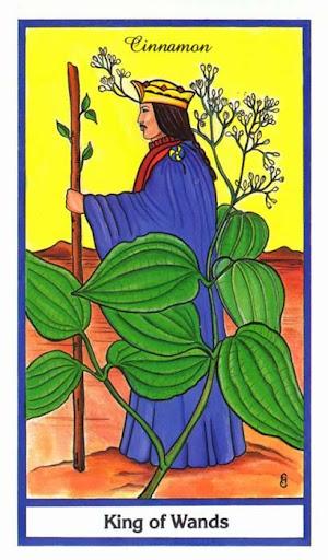 Ý nghĩa lá King of Wands trong bộ bài Herbal Tarot