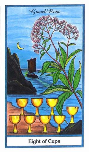 Ý nghĩa lá 8 of Cups trong bộ bài Herbal Tarot