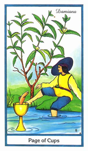 Ý nghĩa lá Page of Cups trong bộ bài Herbal Tarot