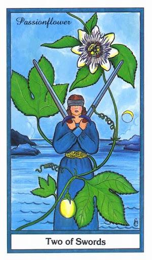 Ý nghĩa lá 2 of Swords trong bộ bài Herbal Tarot