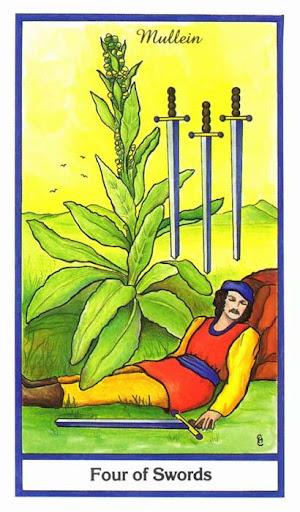 Ý nghĩa lá 4 of Swords trong bộ bài Herbal Tarot