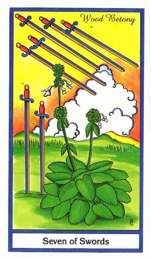 Ý nghĩa lá 7 of Swords trong bộ bài Herbal Tarot