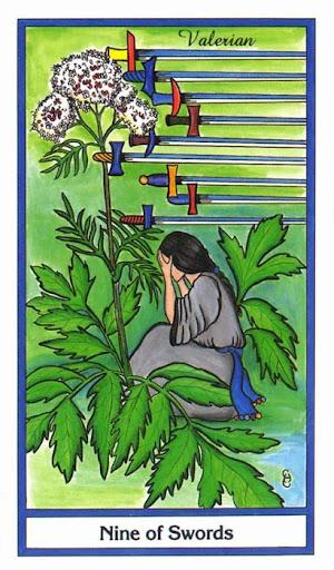 Ý nghĩa lá 9 of Swords trong bộ bài Herbal Tarot