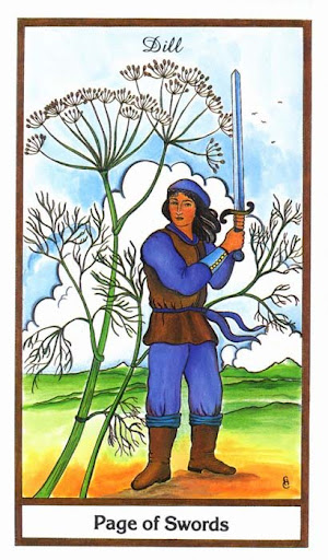 Ý nghĩa lá Page of Swords trong bộ bài Herbal Tarot