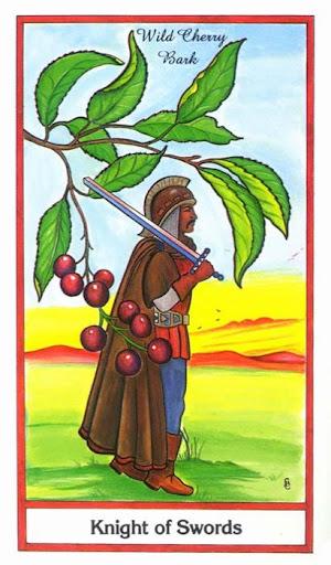 Ý nghĩa lá Knight of Swords trong bộ bài Herbal Tarot