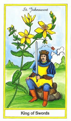 Ý nghĩa lá King of Swords trong bộ bài Herbal Tarot