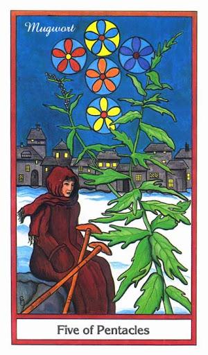 Ý nghĩa lá 5 of Pentacles trong bộ bài Herbal Tarot
