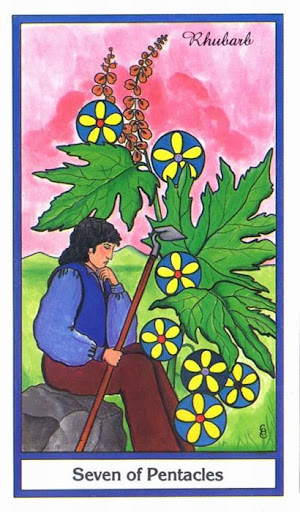 Ý nghĩa lá 7 of Pentacles trong bộ bài Herbal Tarot