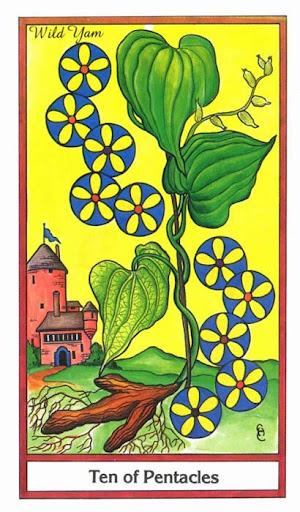 Ý nghĩa lá 10 of Pentacles trong bộ bài Herbal Tarot