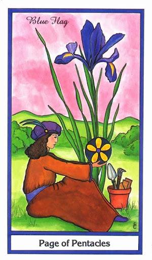 Ý nghĩa lá Page of Pentacles trong bộ bài Herbal Tarot